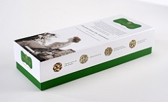 The Journey Collection - Essential Green Tea Assortment
